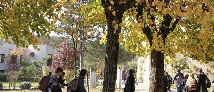 lv-vie-quotidienne-verp-novembre-2010